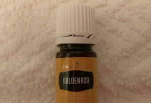 Young Living Goldenrod Oil